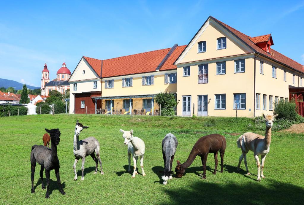 JUFA Hotel Pollau Pollau, Austria