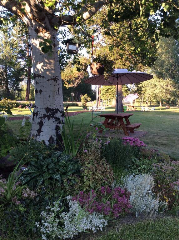 A garden outside Aspen Inn