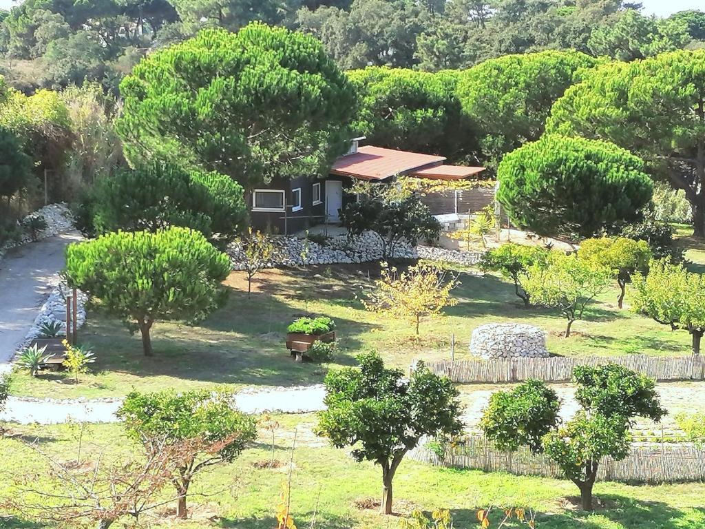 Um jardim no exterior de Quinta do Meco - Beach & Nature