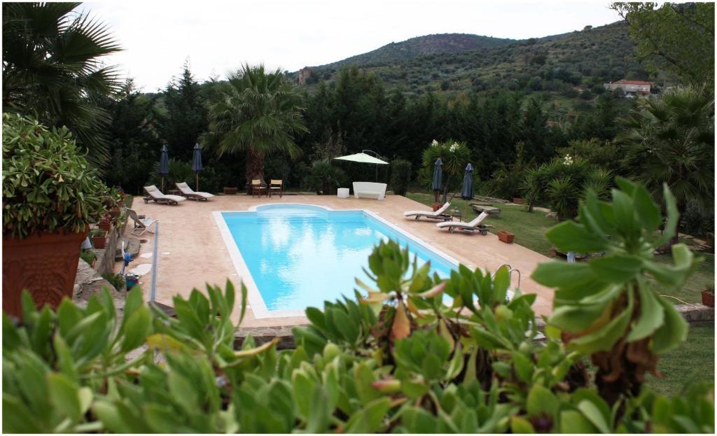 The swimming pool at or close to Villa Tresino B&B