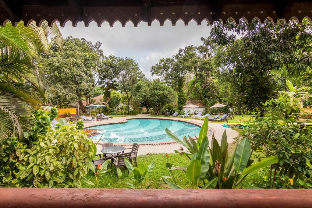The swimming pool at or near Hotel Bougainvillea Granpa's Inn