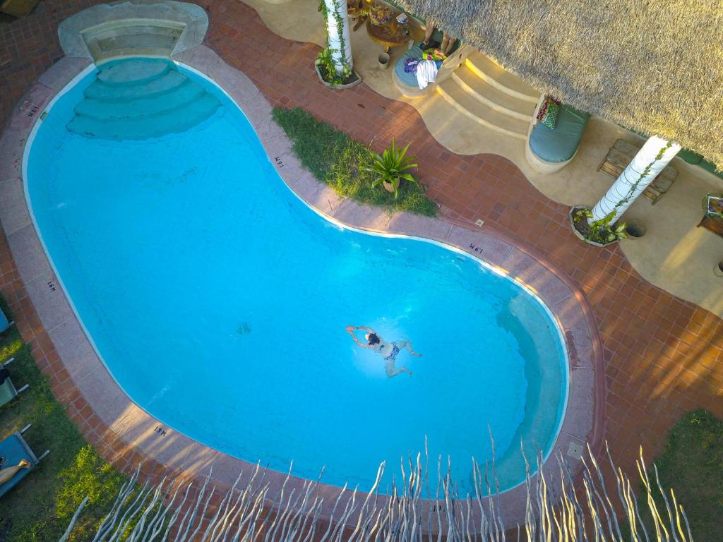 A view of the pool at Distant Relatives Ecolodge & Backpackers or nearby