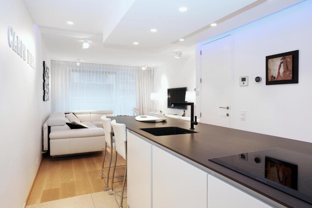 Cuisine ou kitchenette dans l'établissement Luxury Suite Koksijde 102 Adult only!
