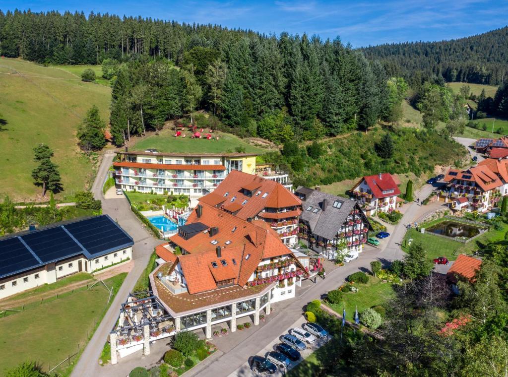 Naturparkhotel Adler Wolfach, Germany