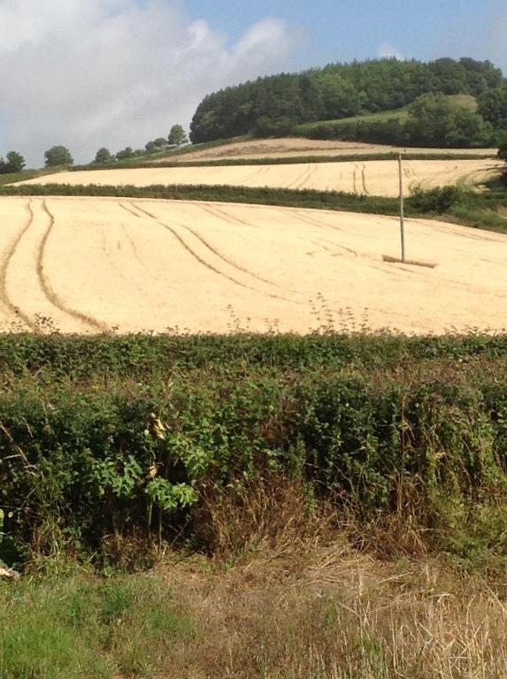 Lower Pinn Farm - Laterooms