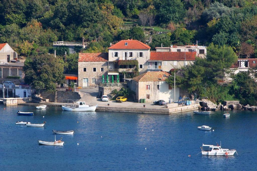 Widok z lotu ptaka na obiekt Apartments and rooms by the sea Molunat, Dubrovnik - 2139