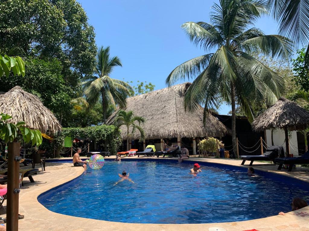 The swimming pool at or near Dreamer Palomino