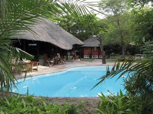 The swimming pool at or near Gweta Lodge