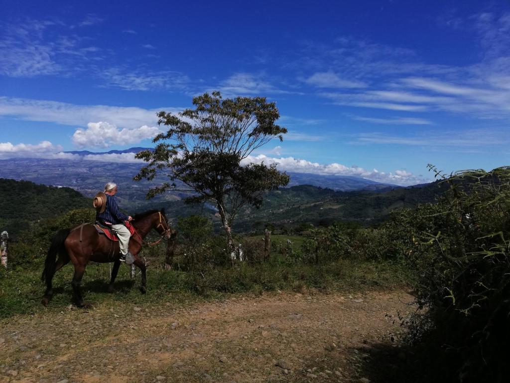 Attività di equitazione presso il bed & breakfast o nelle vicinanze