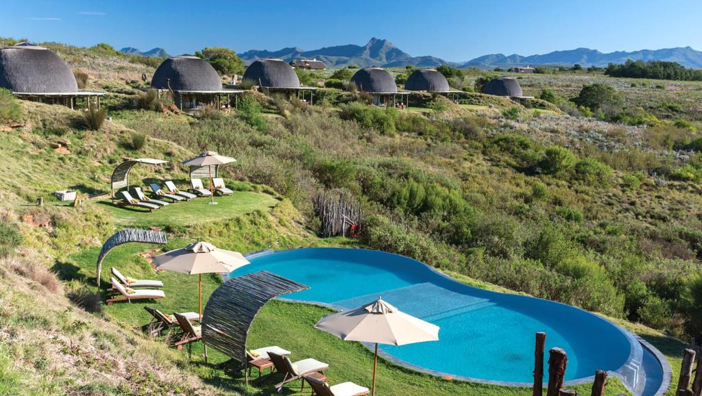 A view of the pool at Gondwana Game Reserve or nearby