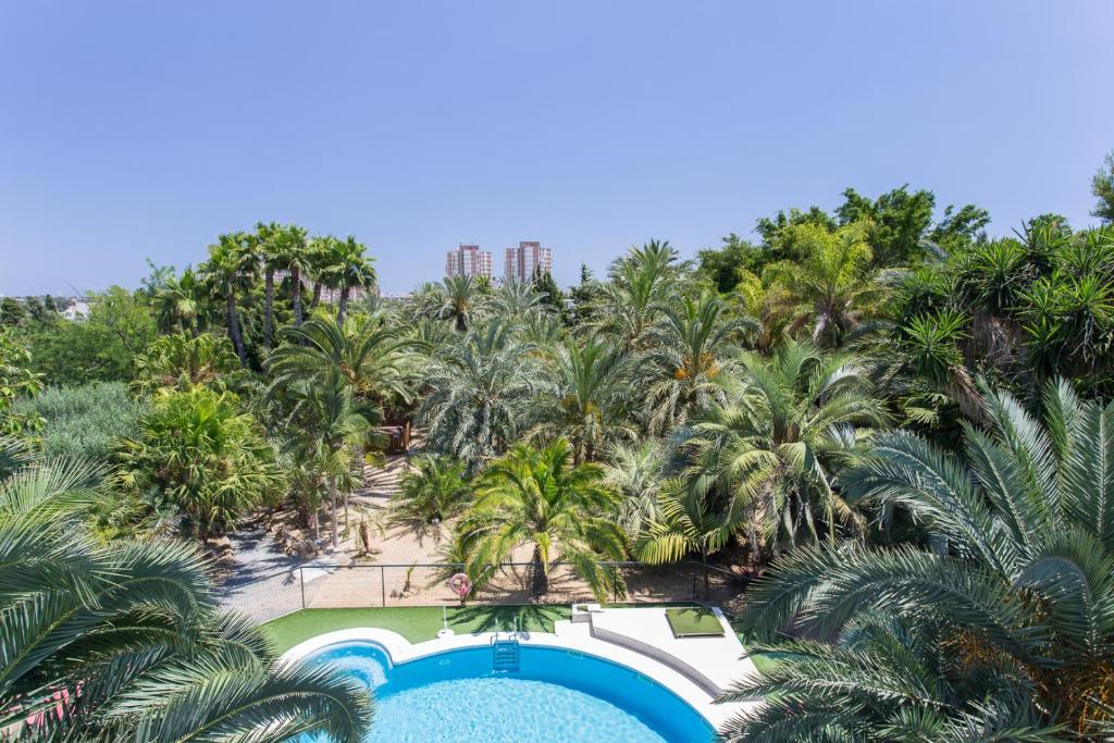 A view of the pool at Apartamentos El Palmeral de Madaria or nearby