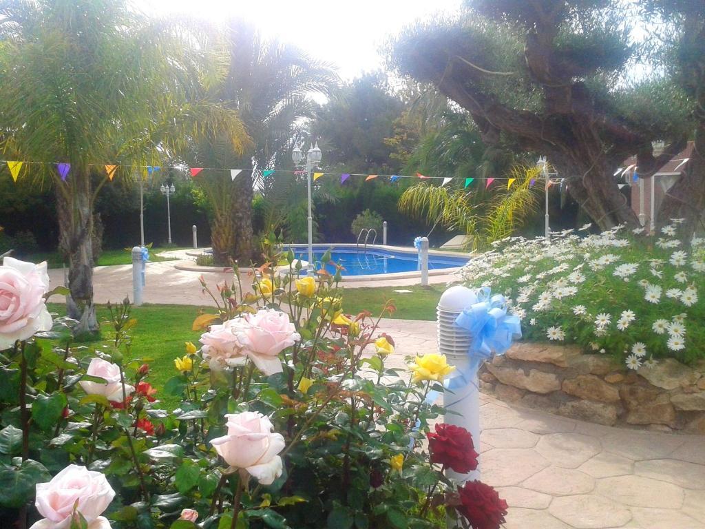 The swimming pool at or near Apartment Partida Torrellano Bajo, Poligono 2, 43A, 03320 Elx, Alicante, Espagne