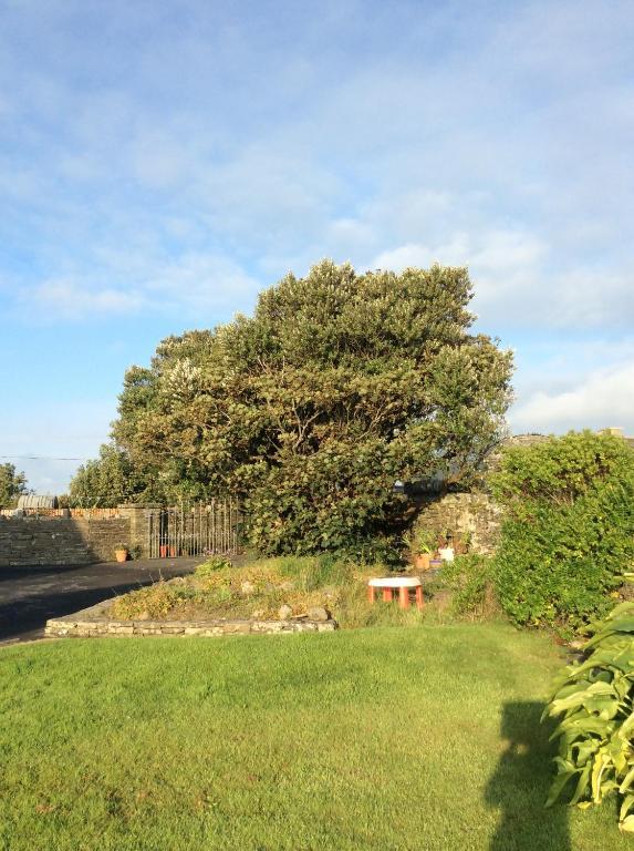 Clonmore Lodge B&B Quilty, Ireland