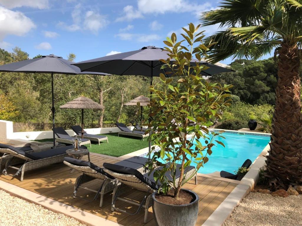 The swimming pool at or near Casa Sereno