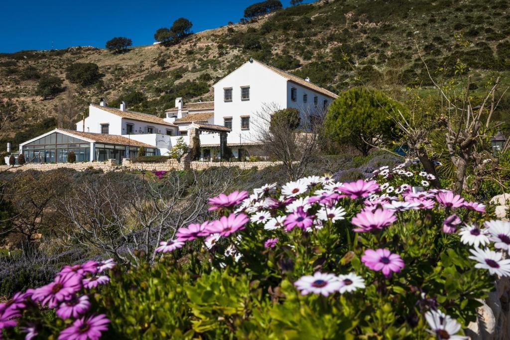 La Fuente del Sol Hotel & Spa 21