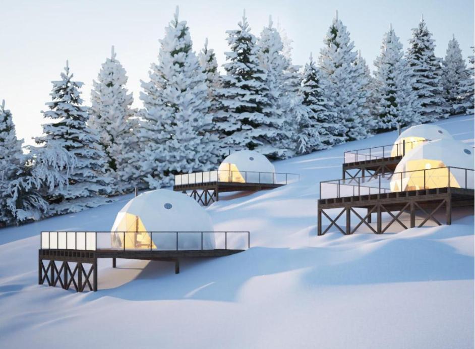 Iivaara Wilderness Lodge