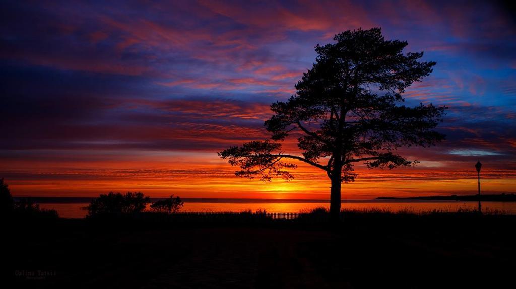 Вид на восход или закат из отеля или места поблизости