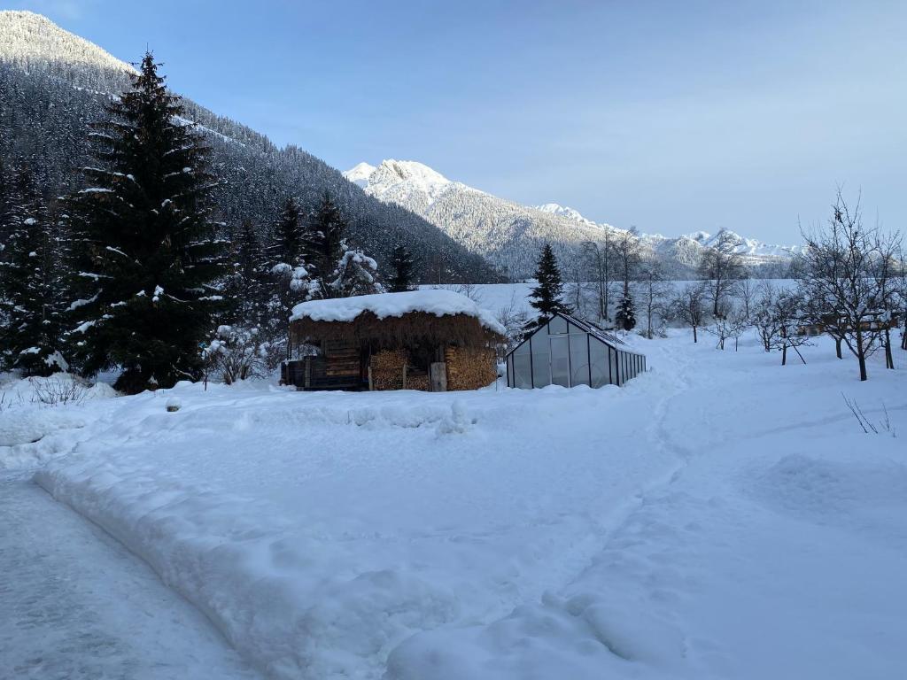 Ferienwohnungen Landler during the winter