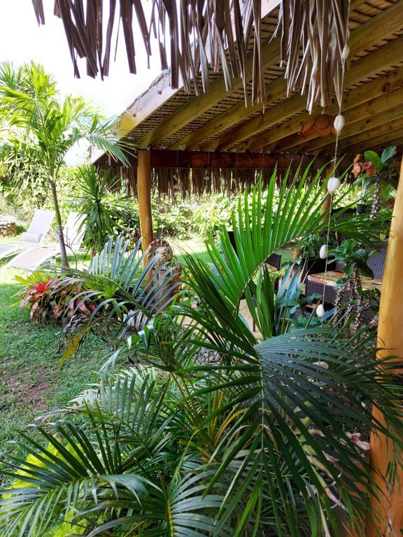 Um jardim em Manaeva lodge