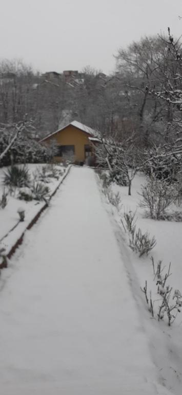 Pensiunea Lucia Ana during the winter