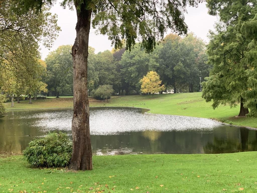 A garden outside Monteurwohnung Mönchengladbach Geroweiher