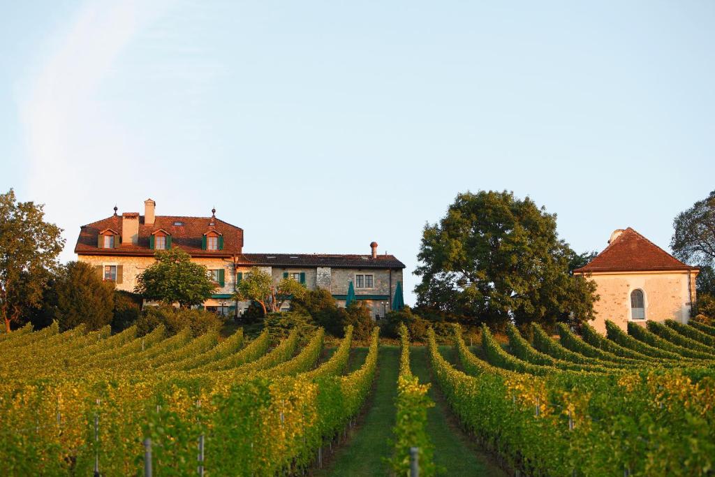 Domaine de Chateauvieux Peney-Dessus, Switzerland
