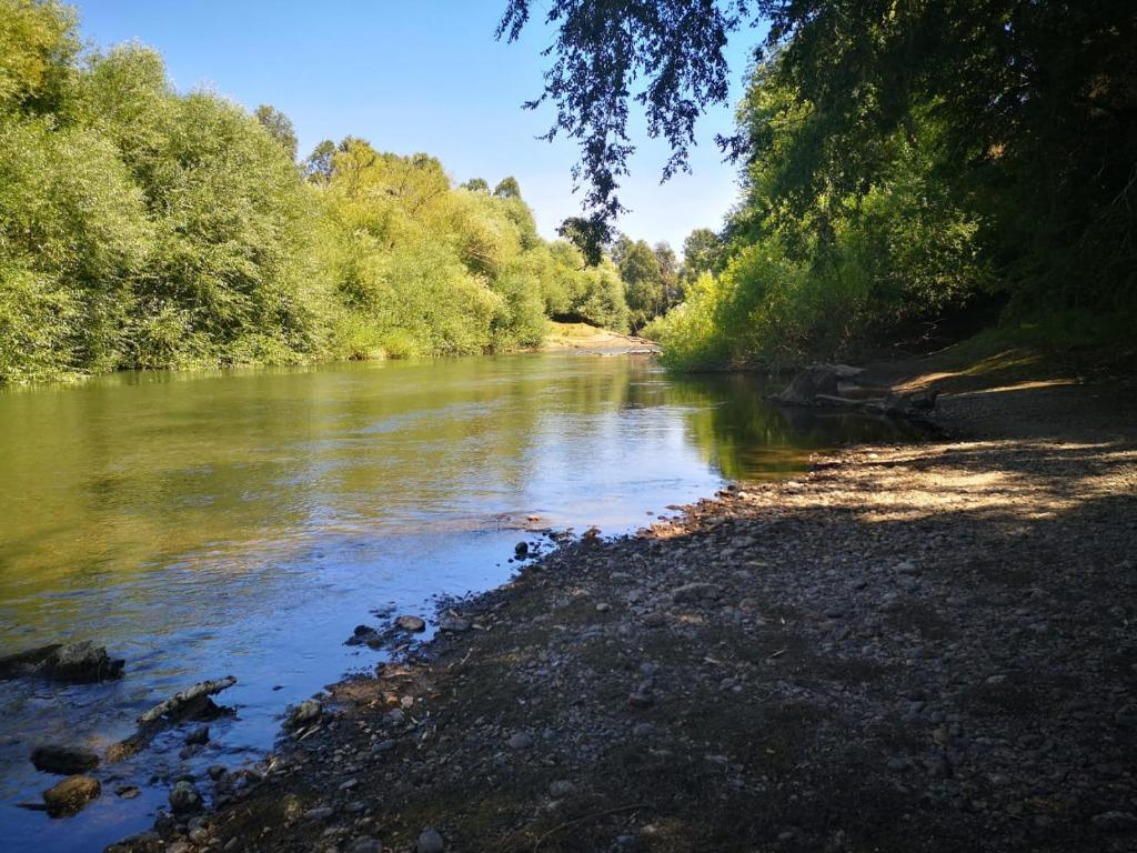 Catripulli a orilla de Río Trancura 26km de Pucón