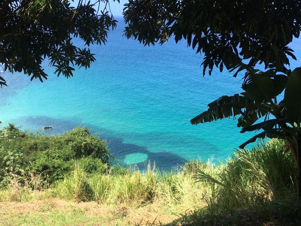 Natural landscape near the condo hotel