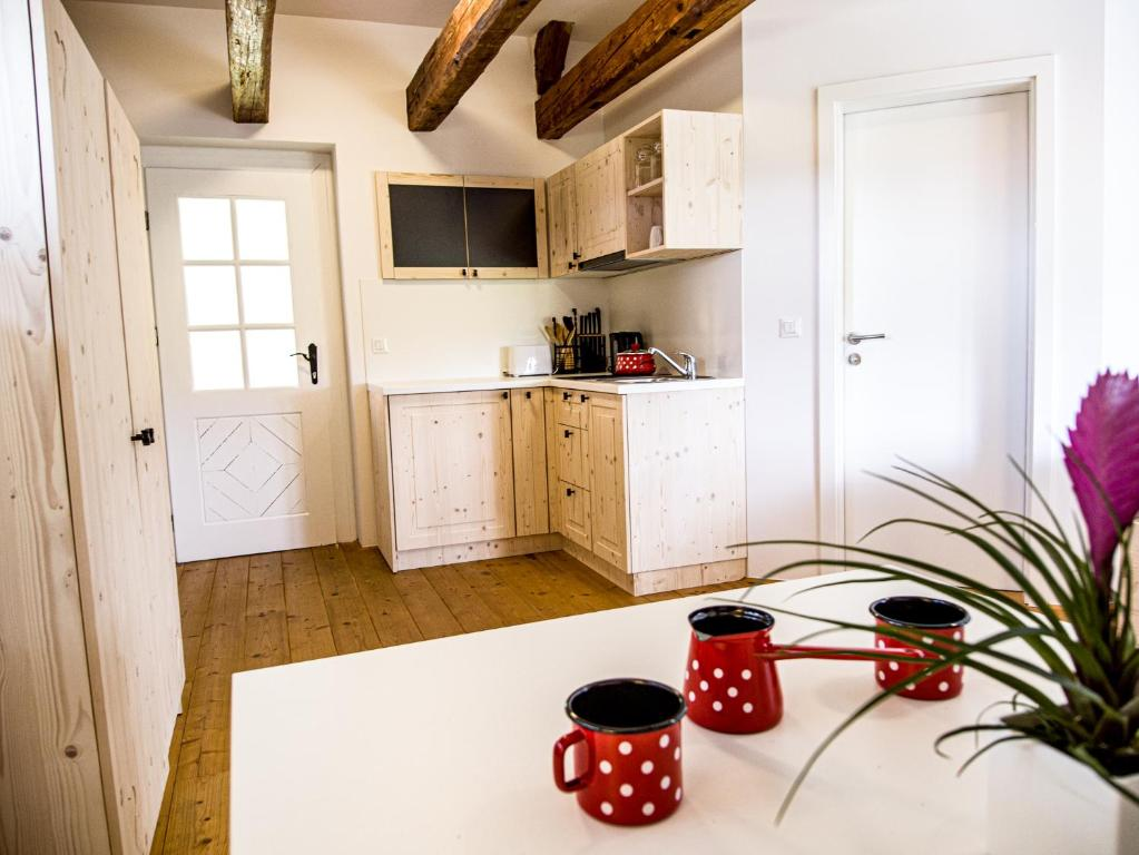 A kitchen or kitchenette at Apartments Strmol