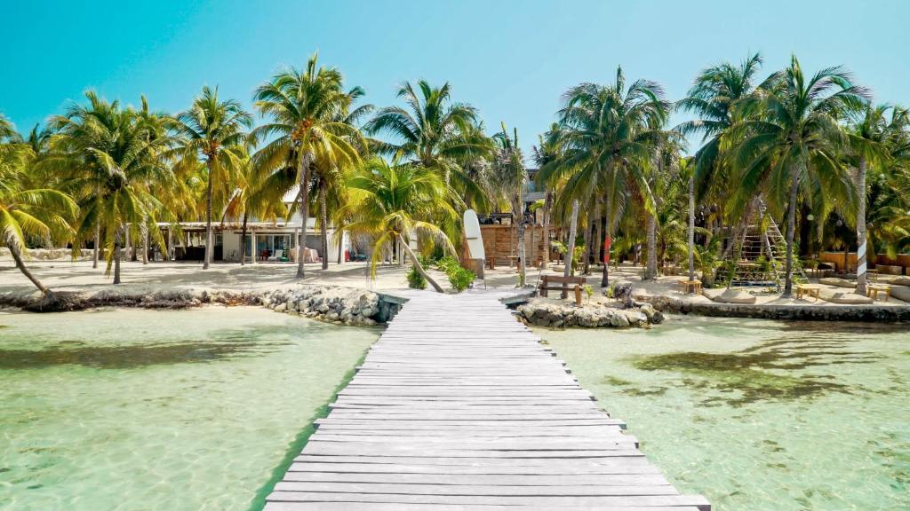 Jardin de l'établissement Nomads Hotel & Beachclub
