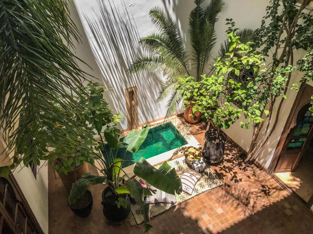 Ein Blick auf den Pool von der Unterkunft Dar Zaman oder aus der Nähe