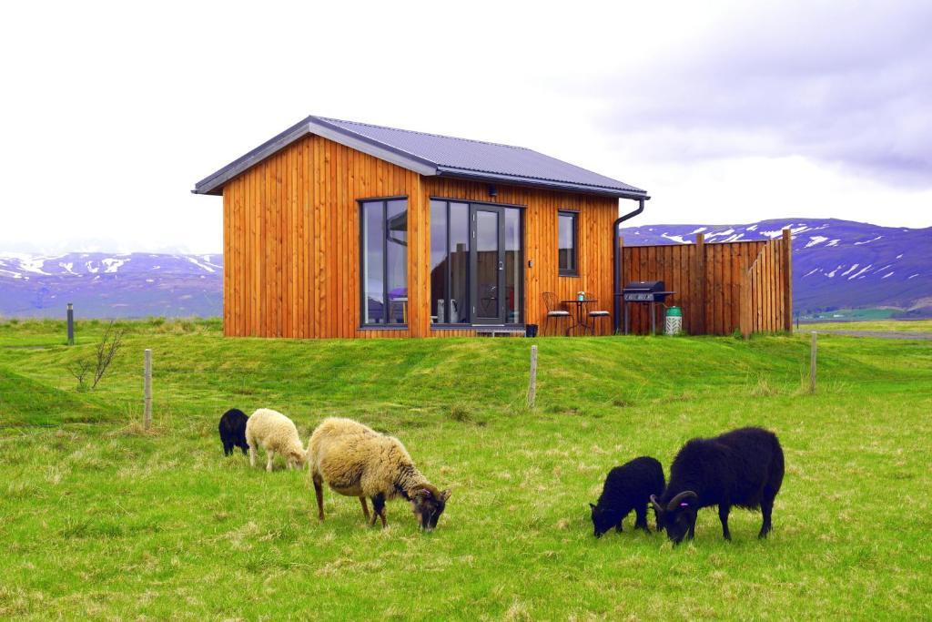 Austurey Cottages