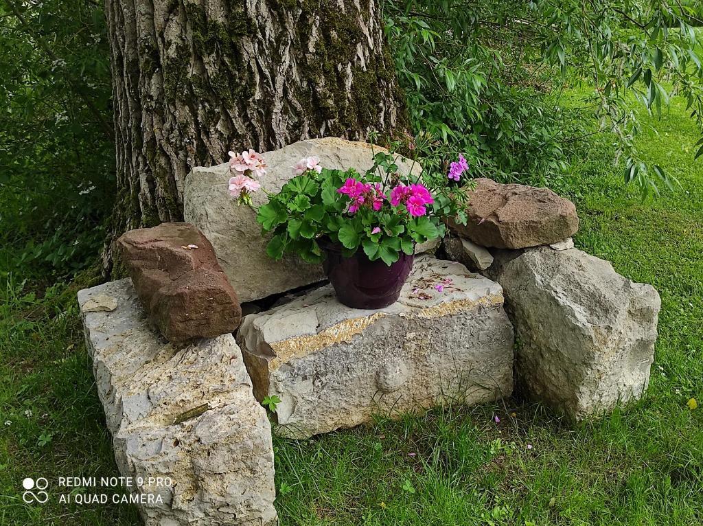 A garden outside Gite de peupliers