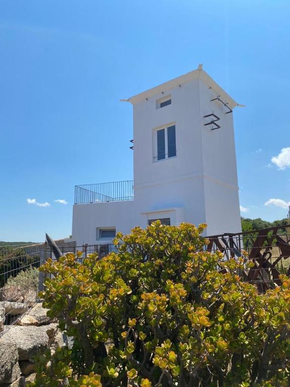 Torre Bandera*