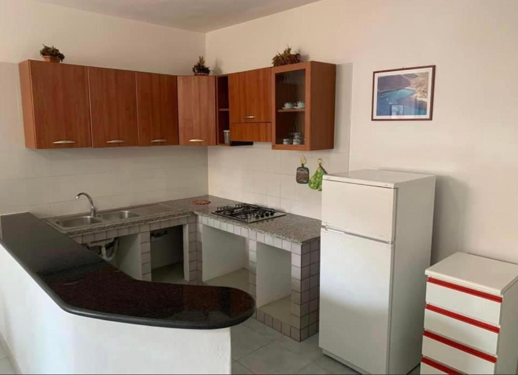 A kitchen or kitchenette at Lopadusa trilo 1