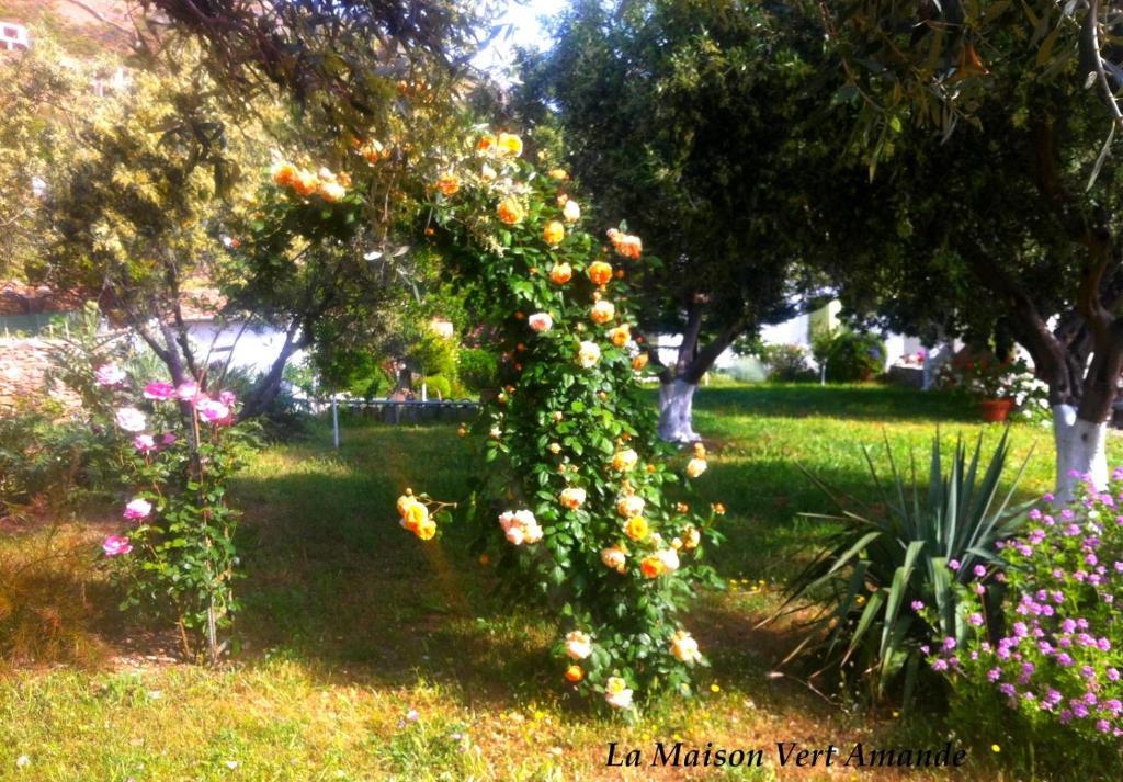 Giardino di La Maison Vert Amande