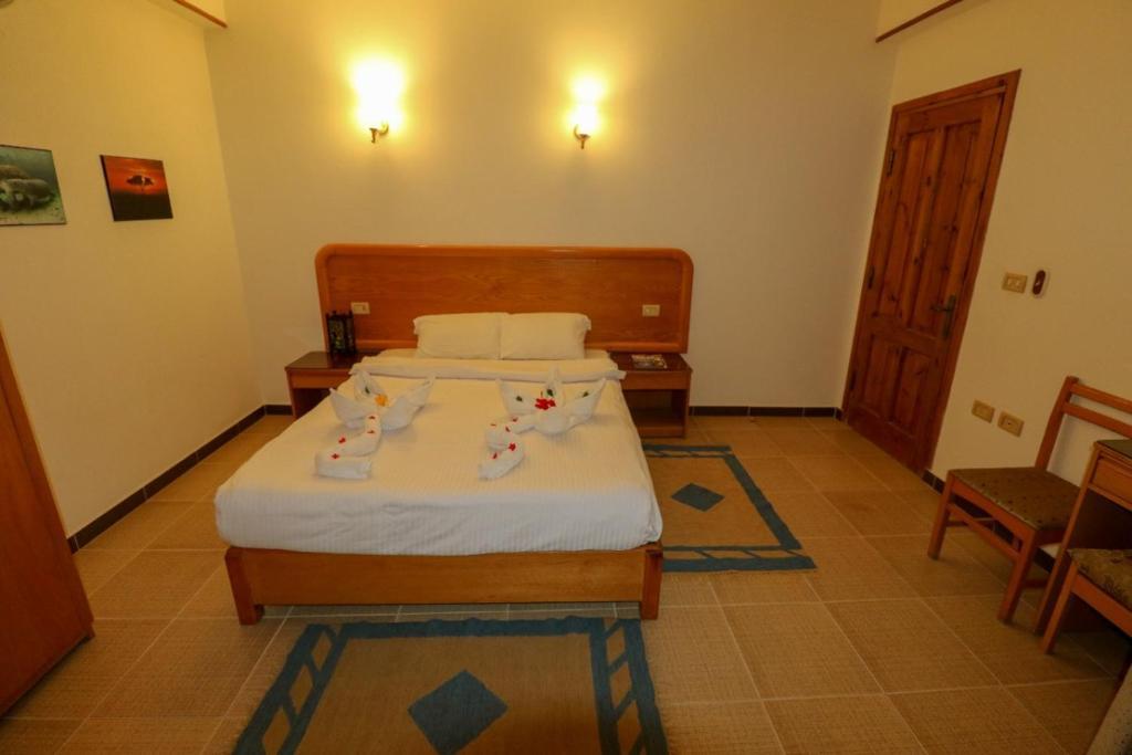 Acacia Dahab Hotel - Laterooms