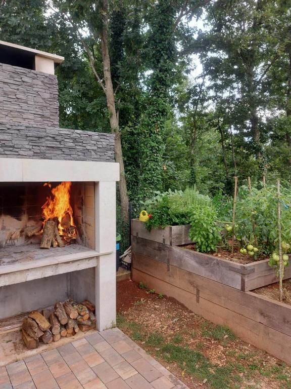 Attrezzature per barbecue disponibili per gli ospiti dell'affittacamere