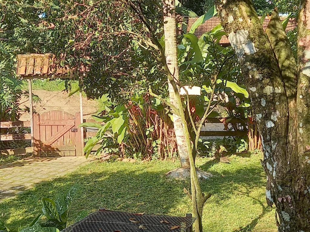 A garden outside Guerreiro Das Ondas