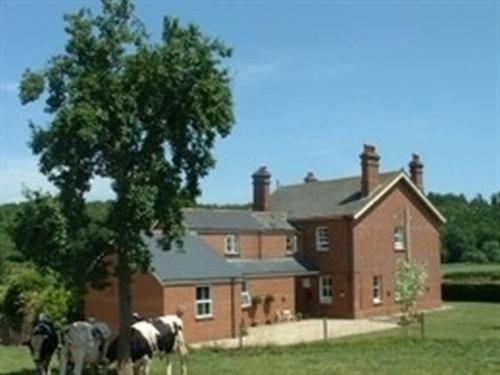 Mill Farm in Kenton, Devon, England