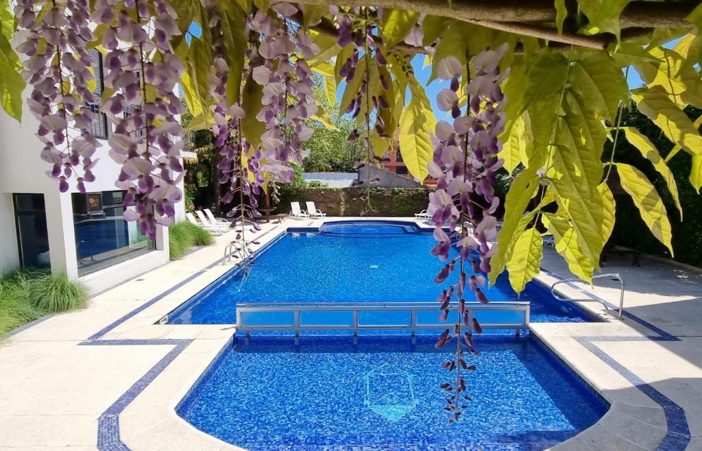 The swimming pool at or near Hotel Italiano