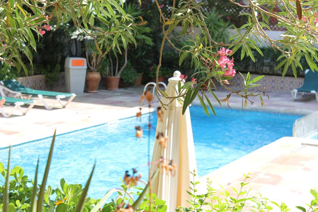 Het zwembad bij of vlak bij Apartamentos Isla Del Sol