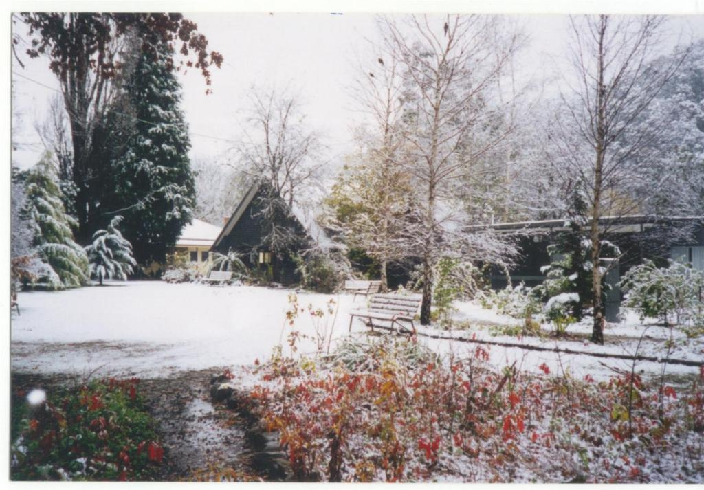 Mountain View Holiday Retreat during the winter
