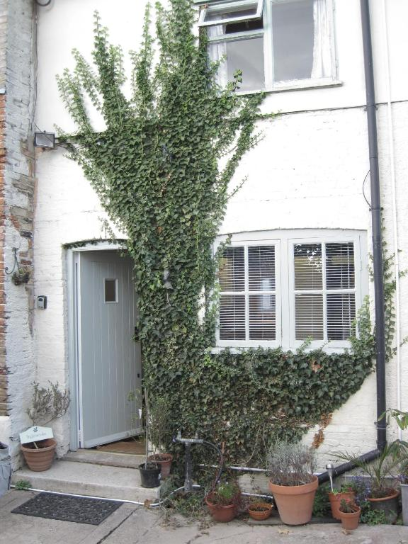 The Walnuts Country House - Laterooms