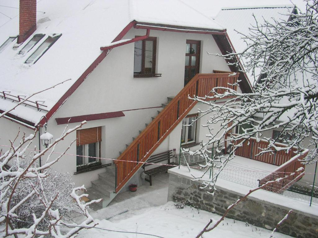 Apartments Dvor during the winter