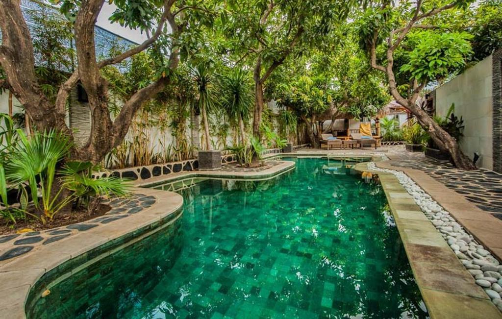 The swimming pool at or near Scallywags Mango Retreat