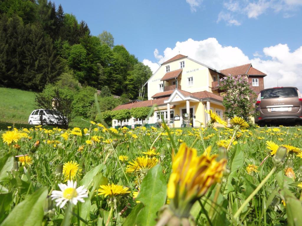 Familiengasthof Maier Mautern, Austria