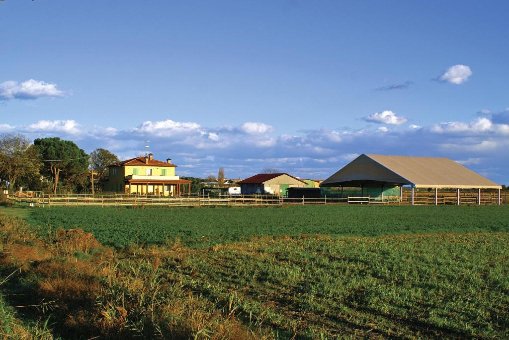 The surrounding neighborhood or a neighborhood close to the farm stay