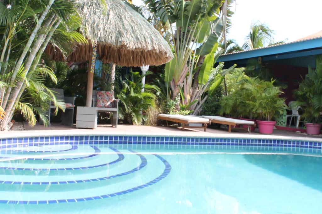Het zwembad bij of vlak bij Caribbean Flower Apartments