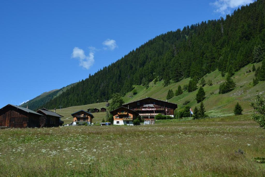 Hotel Restaurant Walliser Sonne Reckingen - Gluringen, Switzerland